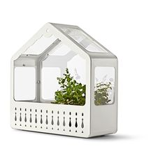 IKEA PS 2014 Greenhouse - $29.99   The greenhouse can hang on the wall or rest on a flat surface.  It's so cute!