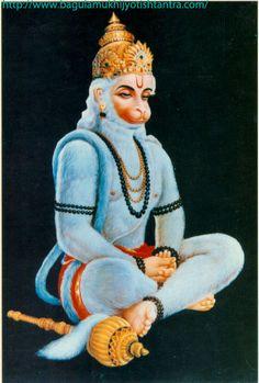 Find astrological remedies service for you by Raj Guru Pandit