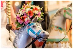 Wedding Photography at the Perth Zoo Carousel.  Photography by Trish Woodford - Mandurah Wedding Photographer