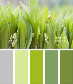 Сочетания с зеленым оттенком