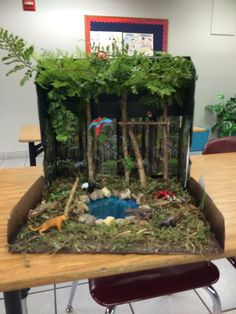 Shoe Box Rainforest - Bing Images @tracylynncruz