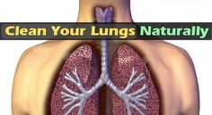 How to CLEAN your Lungs from nicotine and Toxins in precisely three Days ! Toxins within the kind of environmental pollution or through active and passive smoking will enter your lungs and harm them. If you're a chain smoker your Natural Cures, Natural Healing, Natural Treatments, Natural Beauty, Health And Beauty, Health And Wellness, Health Blogs, Health Care, Stop Smoking Cigarettes
