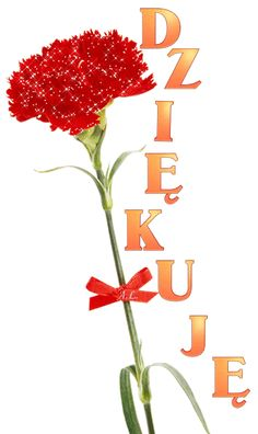 Amazing Flowers, Birthday, Happy, Artwork, Movie Posters, Poland, Text Posts, Thanks, Cards