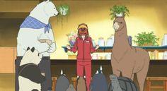 Polar Bear Cafe Episode #41 Anime Review
