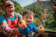 陽光燦爛 整個畫面就是不一樣在味衛佳柿餅之柿子園(二姐和小王子)  攝影:Yuan Huang