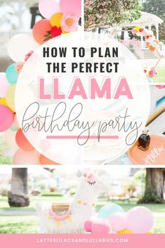 I've gathered some of the most amazing llama and cactus birthday ideas for you here, in one place, with links on where to purchase various items as well. Girl Birthday Themes, Birthday Party For Teens, Birthday Ideas, Mexican Fiesta Birthday Party, Fiesta Party, Llama Birthday, For Your Party, Lilacs, Party Planning