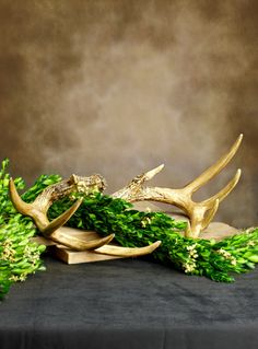 Spray Paint Gold-Price compare with Hobby Lobby Faux Antlers 11in (Set of 2)