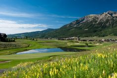 Wildflowers mark the beginning of Summer at the golf course in Crested Butte