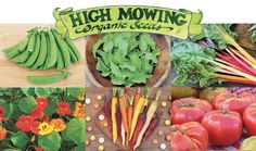 Start a Seed Fundraiser Today — Fast, Simple, Profitable FarmRaiser has just partnered with High Mowing Organic Seeds to bring healthy, high-profit fundraising to your school. No up front costs