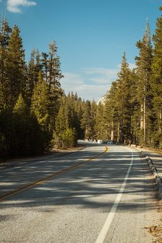 Tioga road / Yosemite National Park