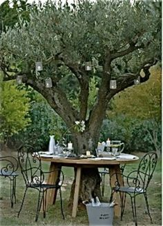 hanging candles and sweet table under the olivetree