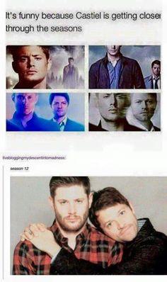 Castiel getting closer to Dean this is funny but i still say no to destiel Misha Collins, Sterek, Gifs Supernatural, Supernatural Wallpaper, Jensen Ackles, Impala 67, Humor, Got Anime, Spn Memes