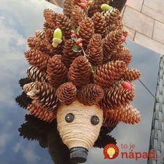 Najkrajšie jesenné dekorácie v obchode nekúpite: Vyrobte si roztomilých ježkov do bytu aj záhrady - zvládnete to za pár minút! Autumn Crafts, Nature Crafts, Christmas Crafts, Pine Cone Art, Pine Cone Crafts, Diy And Crafts, Crafts For Kids, Hedgehog Craft, Halloween Porch Decorations