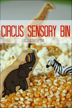 Pretend play with a circus themed sensory bin Combine snack time with imagination play while talking about animal identification animal names animal sounds and Circus Activities, Preschool Themes, Preschool Classroom, Sensory Activities, Toddler Activities, Preschool Activities, Circus Crafts Preschool, Circus Theme Crafts, Kindergarten