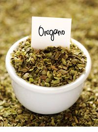 Oregano has one of the highest levels of antioxidants found in any food. The health benefits of oregano can treat conditions from bacterial and viral infections to parasites and asthma.