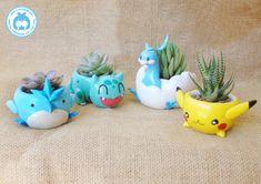 Pokemon ollas de barro - macetas de plantas suculentas