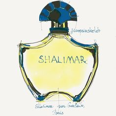 Perfume illustrations by E.c.a.t