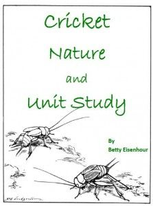 Cricket Unit and Nature Study #NatureStudy #Crickets http://peacecreekontheprairie.com/cricket-unit-and-nature-study