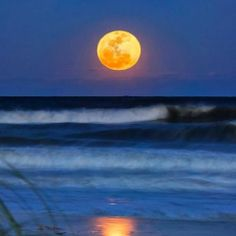 Moon Over Water | moon over water - Tapiture