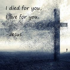 I Died For You. You meaning every one. I am your sin. You were born free of sin. You are born again through Me if you accept Me as your Lord and your God. Signed with My Blood, Jesus Christ