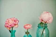 Lush Fab Glam Blogazine: Party Décor Inspiration: Fabulous In Turquoise and Pink.