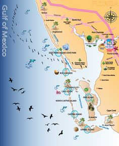 Map out your next vacation in the Florida Gulf! Fort Myers Beach Florida, Moving To Florida, Naples Florida, Florida Vacation, Florida Travel, Vacation Places, Florida Beaches, Family Vacations, Florida Keys