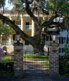 Gates And Railings, South Carolina, Mansions, House Styles, Home Decor, Decoration Home, Manor Houses, Room Decor, Villas
