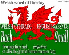 #Welsh Word of the Day: Bach/ #Small