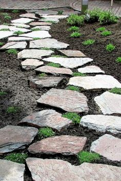 Loose Stones and Flagstones for walkways are common in China and Japan. Nowadays we also see the Steppingstones as a walkway in the garden or in the lawn. It is a great alternative to a tile path.  #Flagstonecompany #Steppingstones #Naturalstones #Flagstone #Garden #Gardenpath #Gardeninspiration #Exterieur #Inspiration #Landscaping #Nature #Plants #Landscape #Stone #Steps #Design #Rocks #Backyard