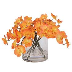 Orange Orchids in Glass Cylinder ,  , large