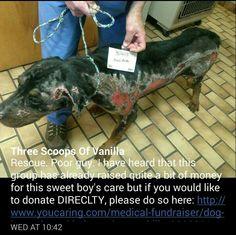 Please help him!!