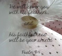 Psalm 91:4   - He will cover you with his feathers, his faithfulness will be your shield.