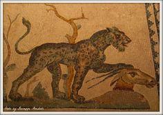 Marta - Museo archelogico nazionale di Taranto
