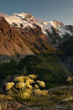 Petite brise du soir en Hautes Alpes, France (by Pierre Rodriguez).