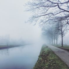 Misty grey  #instafall #ig_sunsets #yoga  #yogateacher #yogajourney  #travel #traveling #rijkevorsel  #kempen  #belgium #iphoneonly #instatravel #instago #instagood  #holiday #photooftheday #iphoneography #travelling #tourism #tourist #instapassport #instatraveling #mytravelgram #travelgram #travelingram #igtravel #weather #mothernature #beautyinnature Sent via @planoly #planoly