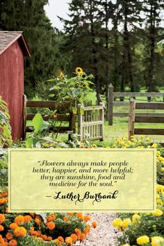"""""""Flowers always make people better, happier, and more helpful; they are sunshine, food, and medicine for the soul.""""   - CountryLiving.com"""