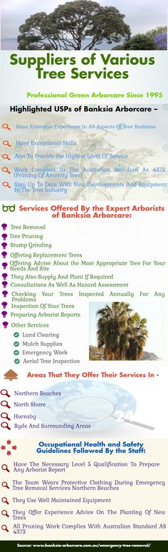 Banksia Arborcare offers highly reliable, competent and low cost tree cutting services Sydney.