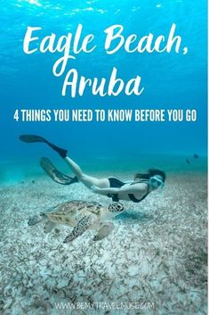 Eagle Beach, Aruba: 4 things you need to know before you go. Learn how to get to Eagle Beach, get accommodation and restaurant recommendation, and find out if Eagle Beach is truly worthy of visiting. #EagleBeach #Aruba Best Beach In Aruba, Eagle Beach Aruba, Stuff To Do, Things To Do, Travel Activities, Aruba Activities, Best Snorkeling, Caribbean Vacations, The Beautiful Country
