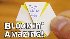 Dave Hax created a video tutorial on how to make custom blooming paper flowers that open up when you add them to water. Fun craft idea to do with kids. You could leave a Valentines message inside and surprise a loved one. Be amazed as you watch it open by Water Bottle Crafts, Water Crafts, Fun Crafts, Art And Craft Flowers, How To Make Water, Valentine Messages, Valentines, Open When, Wonderful Flowers