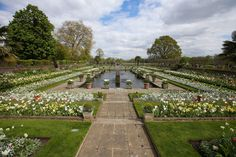 The garden is on the grounds of Kensington Palace and was formerly known as the Sunken Garden.