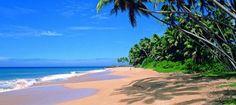 Tour Sri Lanka y Maldivas