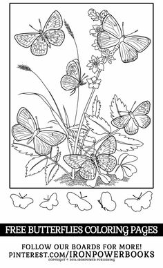 Butterflies Coloring Pages for Girls from @ironpowerbooks  | Please use freely for personal non-commercial use | For more stunning butterflies to color visit http://www.amazon.com/Butterfly-Coloring-Pages-Butterflies-Adults/dp/1500501255