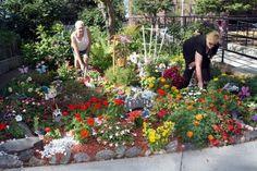 Gorgeous Gardens Photo - Google Search
