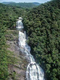 Cachoeira Angra dos Reis - RJ