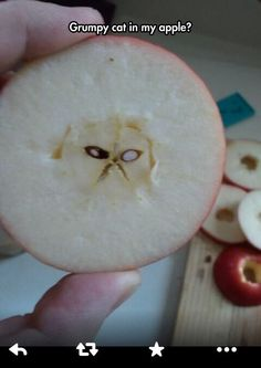 You May Say That's A Grumpy Apple