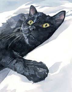 Cat Portrait - watercolor painting by studiotuesday