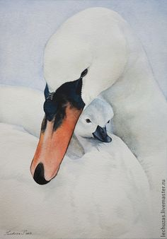 Swans. Traditional art ( watercolor). Prof. paper: LANA 300 g/м2. Svetlana Markina (LechuzaS). ( scene based on photo). Size: 18cm*26cm