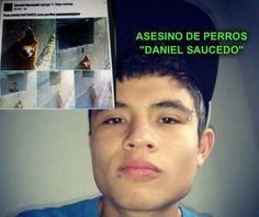 "Mexican teen destroys several dogs for fun, uploads photos on Facebook! Convict Daniel Saucedo now! According to the Facebook page called ""Aquí la Difusión al Encanto y Maltrato Animal Internacional"" Daniel Saucedo is ..."