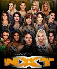 Dana Brooke, Paige Wwe, Wwe Female Wrestlers, Wwe Stuff, Wrestling Superstars, Wwe Wallpapers, Charlotte Flair, Sasha Bank, Wwe Womens