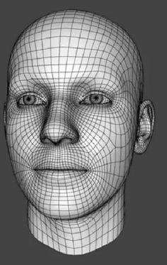 Male Face Wireframe from:http://www.youtube.com/watch?v=0yNjkVjGXL8